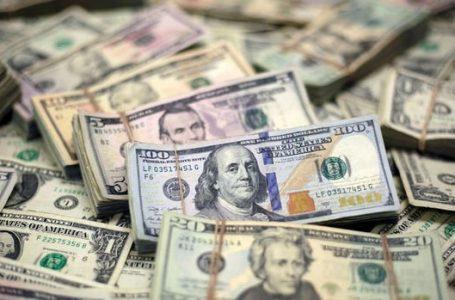 Dolar/TL Şubat ayı kazançlarını silme yolunda